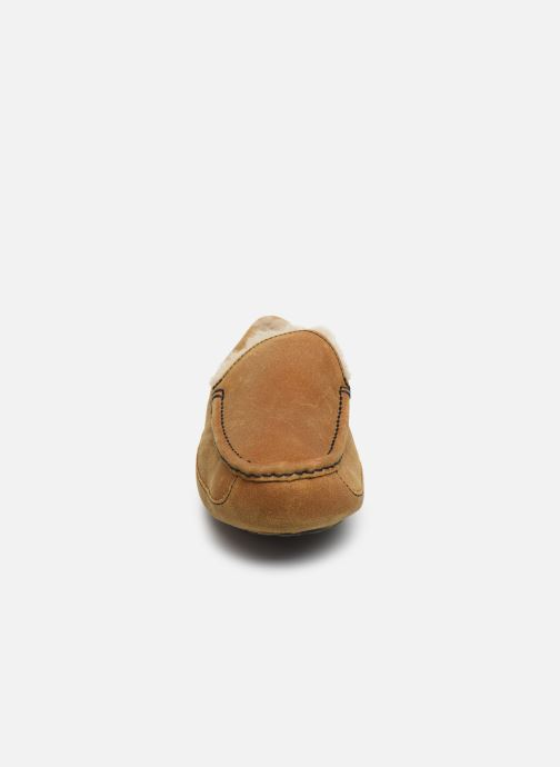 Chaussons UGG Ascot Marron vue portées chaussures