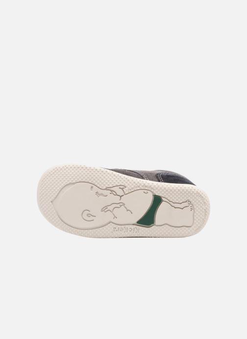 Chaussures à scratch Kickers Bono Gris vue haut