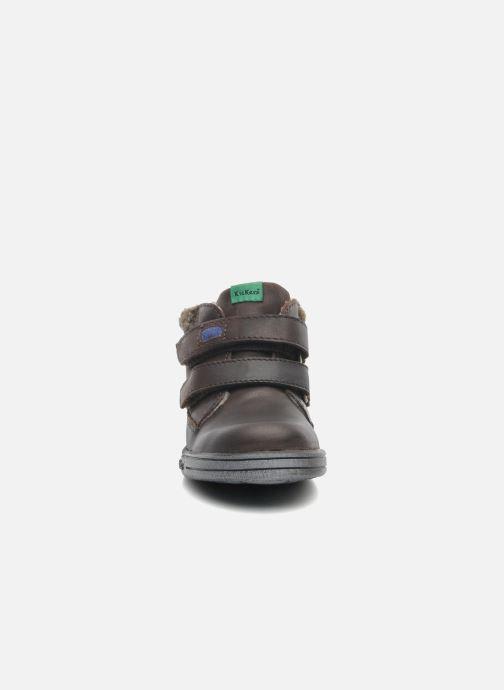 Chaussures à scratch Kickers Talker Cho Marron vue portées chaussures
