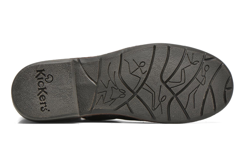 Stiefeletten & Boots Kickers Groove Soft grau ansicht von oben