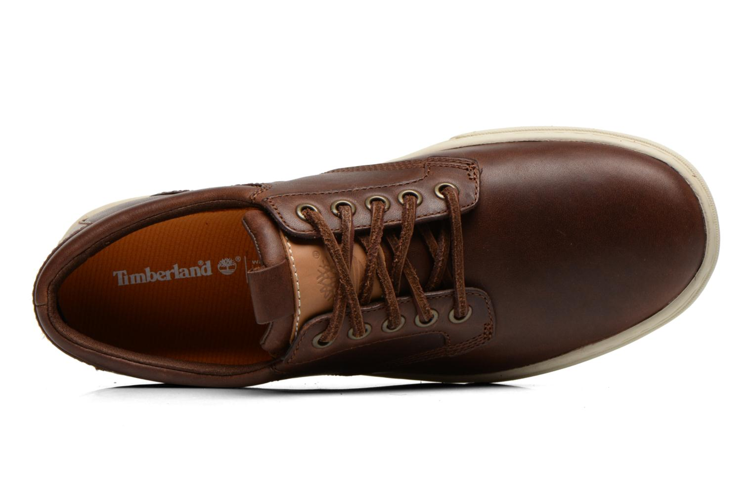 Trainers Timberland Earthkeepers Adventure Cupsole Leather Oxford Brown view from the left