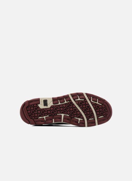 Sneakers Caterpillar Colfax Marrone immagine dall'alto