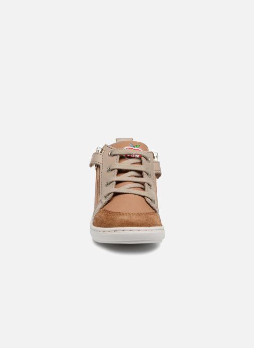 Ankle boots Shoo Pom Bouba Bi Zip Brown model view