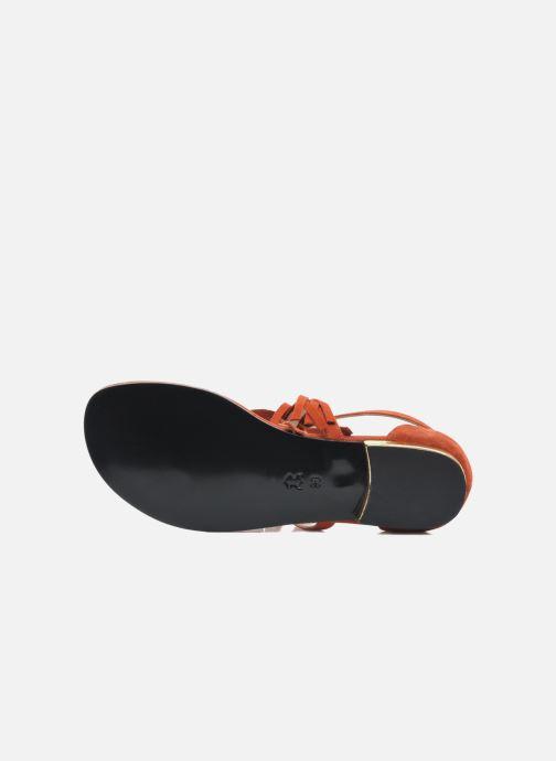 Sandales et nu-pieds MySuelly Mel Marron vue haut