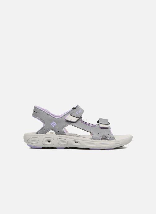 Sandales et nu-pieds Columbia Childrens Techs Gris vue derrière