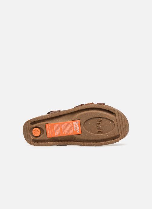 Sandalen Art I Breathe 998 braun ansicht von oben