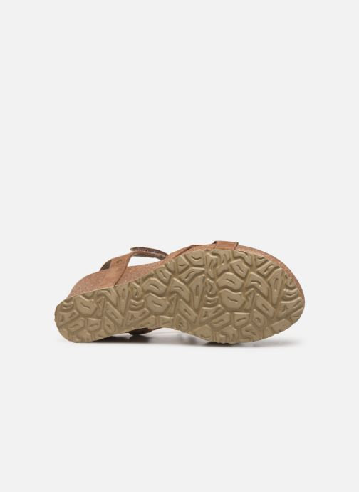 Sandales et nu-pieds Panama Jack Julia Marron vue haut
