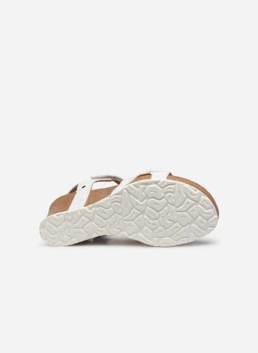 Sandalen Panama Jack Julia Wit boven