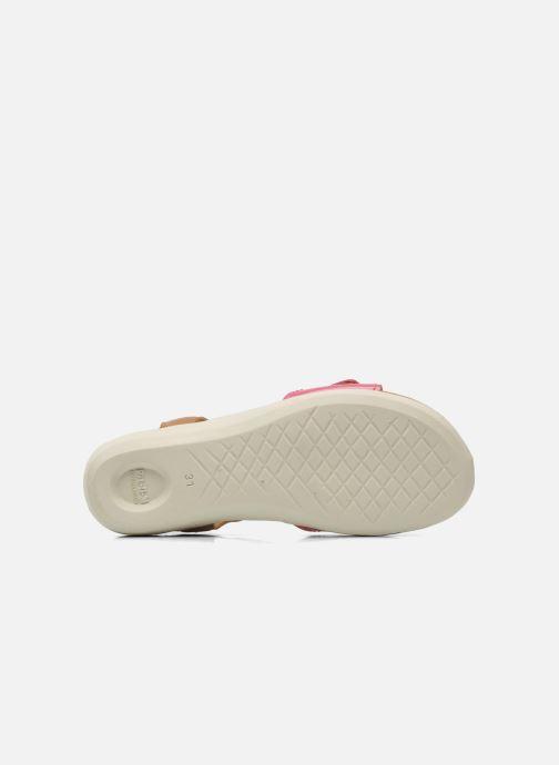 Sandali e scarpe aperte P-L-D-M By Palladium Britta Cash Rosa immagine dall'alto