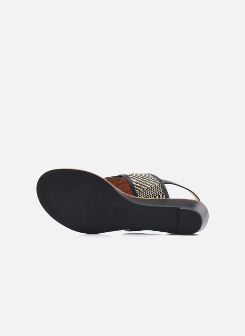 Sandali e scarpe aperte Mellow Yellow Saukute Nero immagine dall'alto