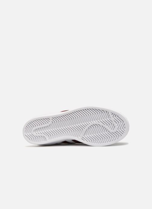 Baskets adidas originals Superstar W Bordeaux vue haut