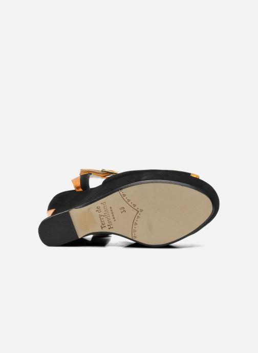 Sandales et nu-pieds Terry de Havilland Izzy Noir vue haut