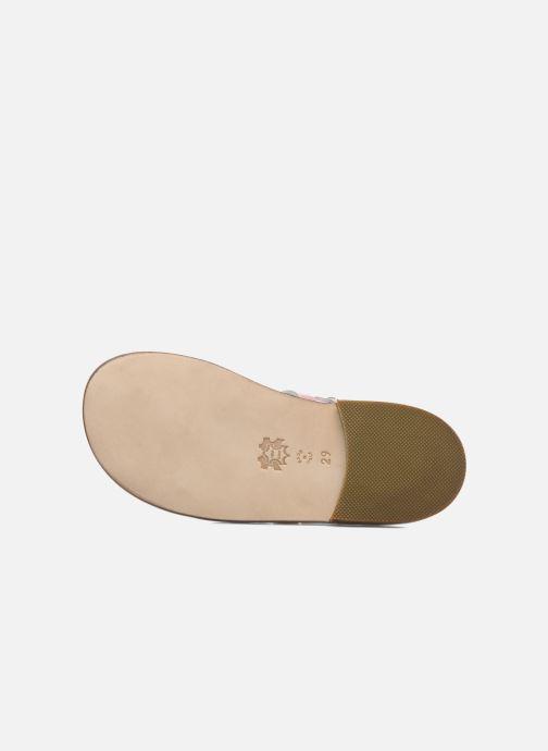 Sandales et nu-pieds PèPè Alteri Rose vue haut