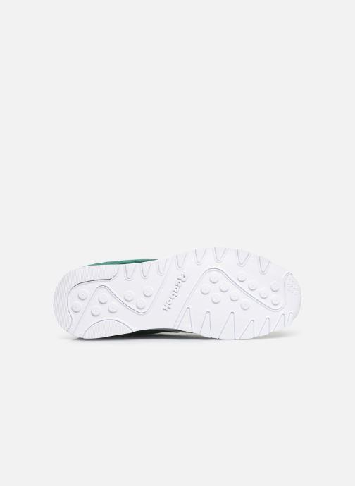 Sneakers Reebok Classic Nylon Groen boven