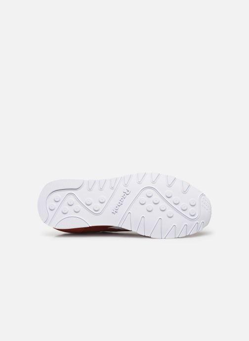 Sneaker Reebok Classic Nylon rot ansicht von oben