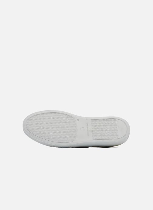 Sneakers Moschino Cheap & Chic Animalier 2 Multi bild från ovan