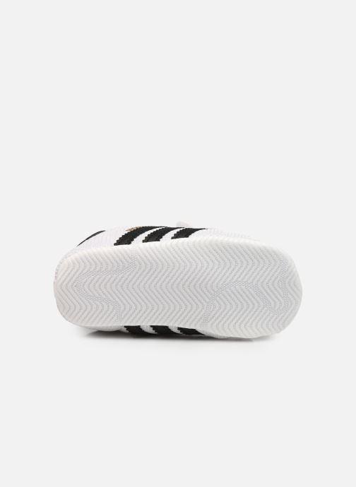 Sneakers adidas originals SUPERSTAR CRIB Bianco immagine dall'alto