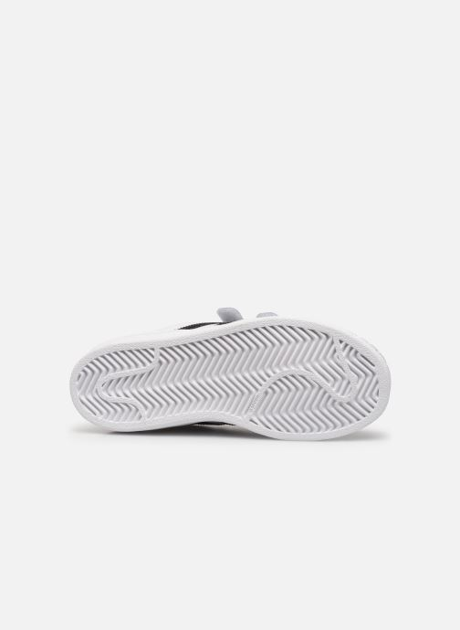 Baskets adidas originals Superstar Foundation Cf C Blanc vue haut