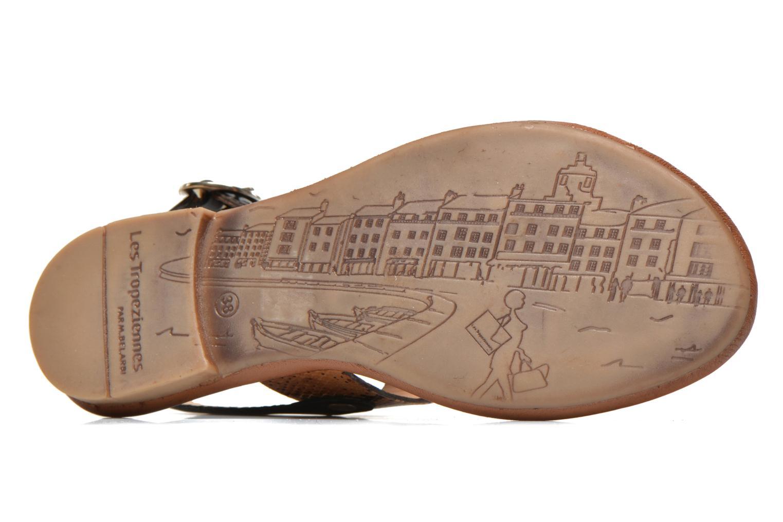 Sandales et nu-pieds Les Tropéziennes par M Belarbi Biniou Marron vue haut