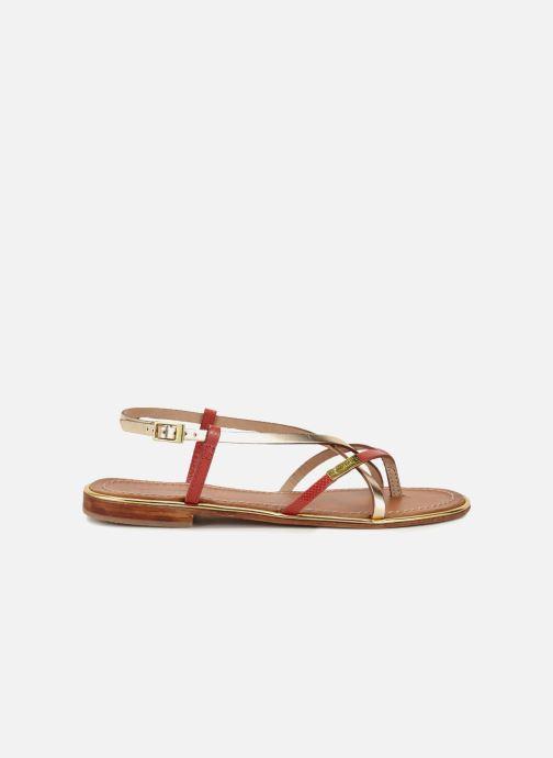 Sandales et nu-pieds Les Tropéziennes par M Belarbi Monaco Or et bronze vue derrière