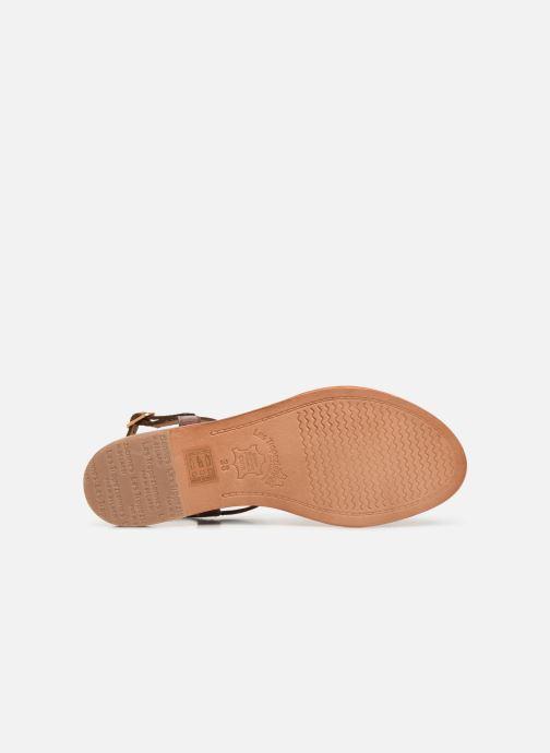 Sandali e scarpe aperte Les Tropéziennes par M Belarbi Hamat Marrone immagine dall'alto