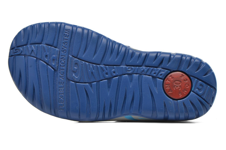 Sandali e scarpe aperte Primigi CALIPSO Azzurro immagine dall'alto