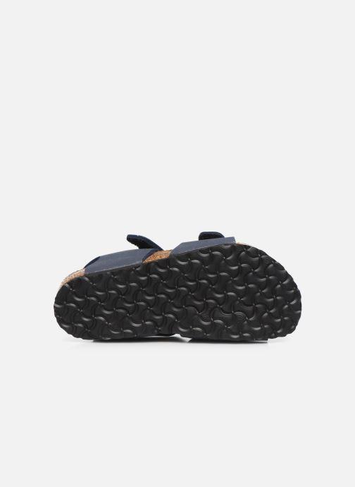 Sandales et nu-pieds Birkenstock PALU Bleu vue haut