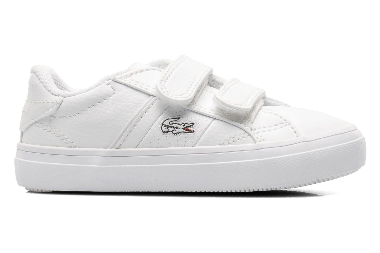 Sneaker Lacoste FAIRLEAD FSM SPI weiß ansicht von hinten