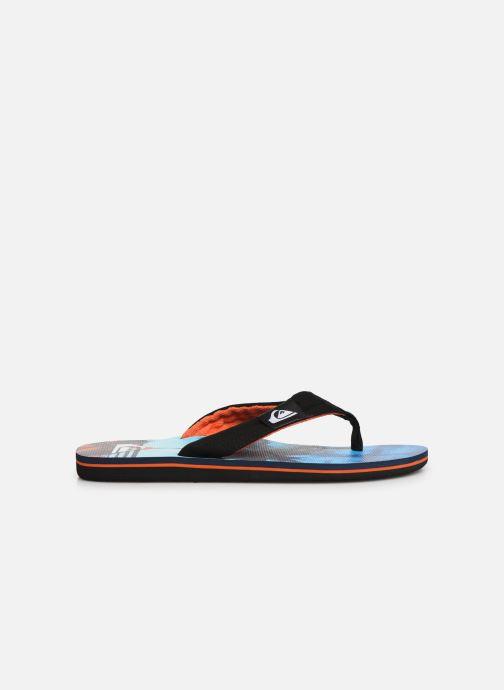 Flip flops Quiksilver Molokai layback Blue back view
