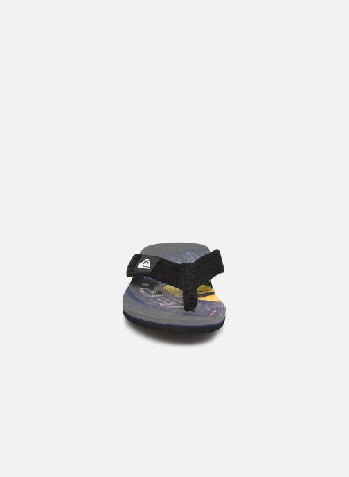 Tongs Quiksilver Molokai layback Gris vue portées chaussures