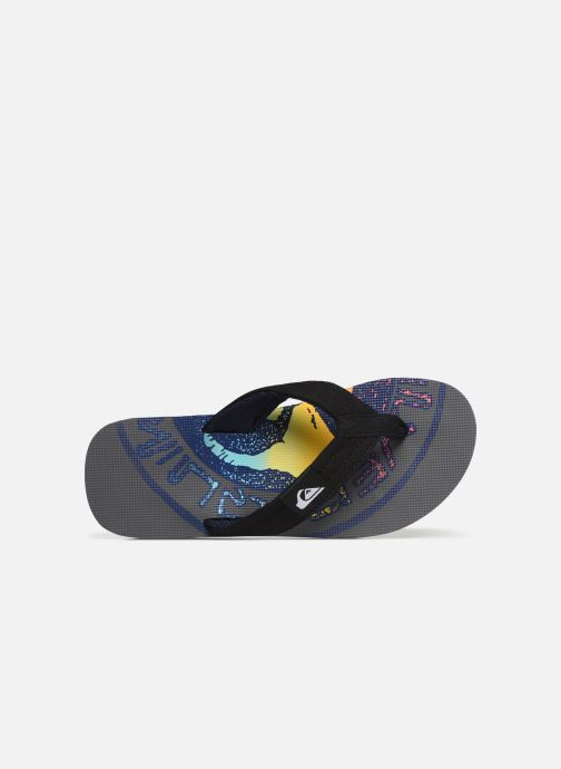 Flip flops Quiksilver Molokai layback Grey view from the left