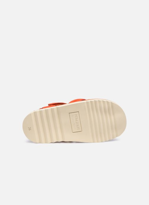 Sandali e scarpe aperte Pom d Api Waff Papy Rosso immagine dall'alto