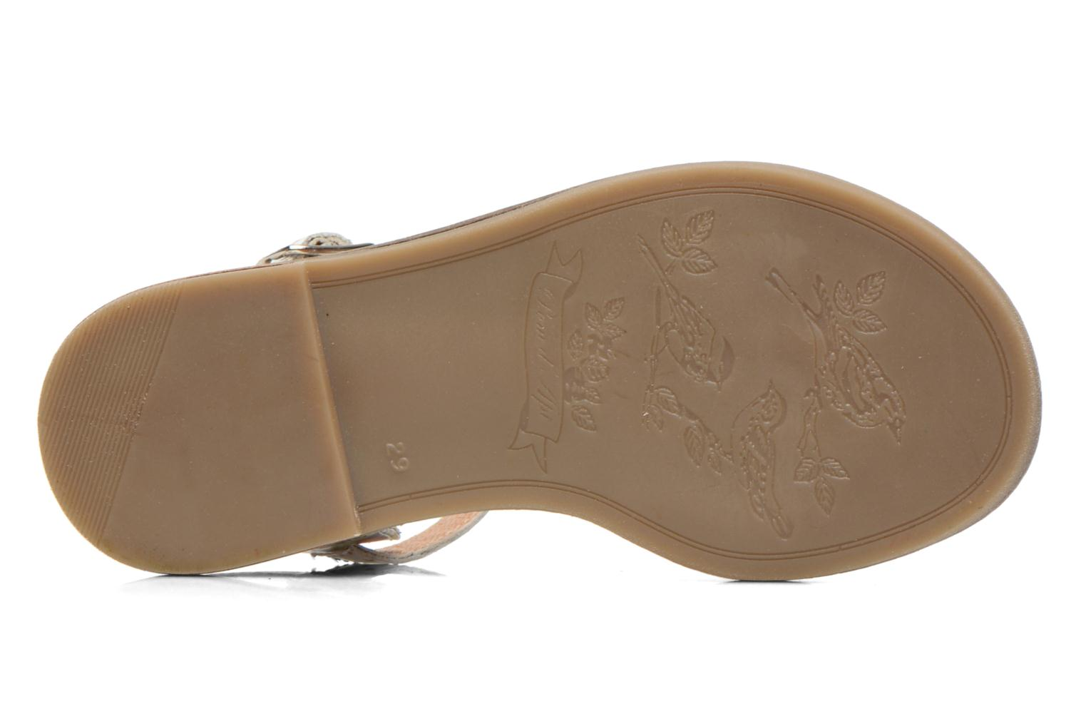 Sandals Pom d Api NIKKY SANDAL Multicolor view from above