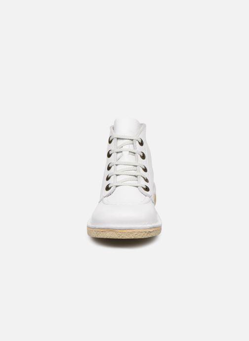 Zapatos con cordones Kickers Legendiknew Blanco vista del modelo