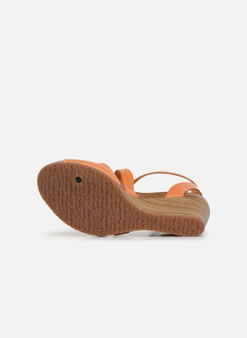 Sandali e scarpe aperte Kickers Spagnol Arancione immagine dall'alto