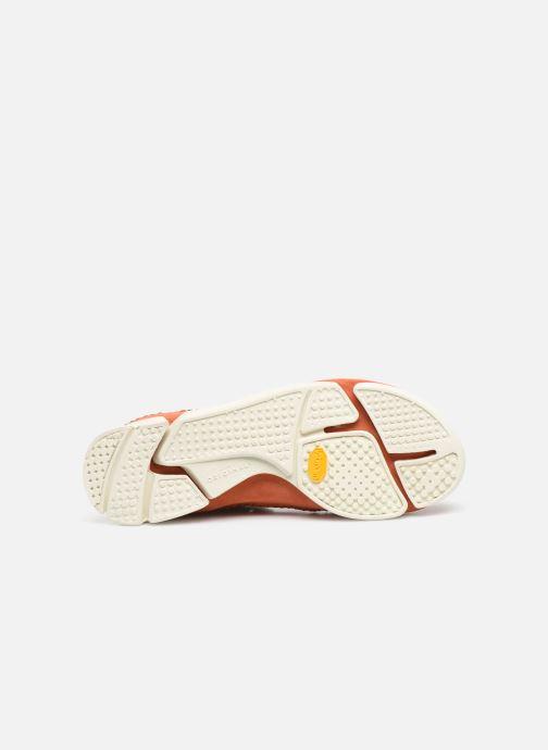 Baskets Clarks Originals TrigenIc Flex Orange vue haut