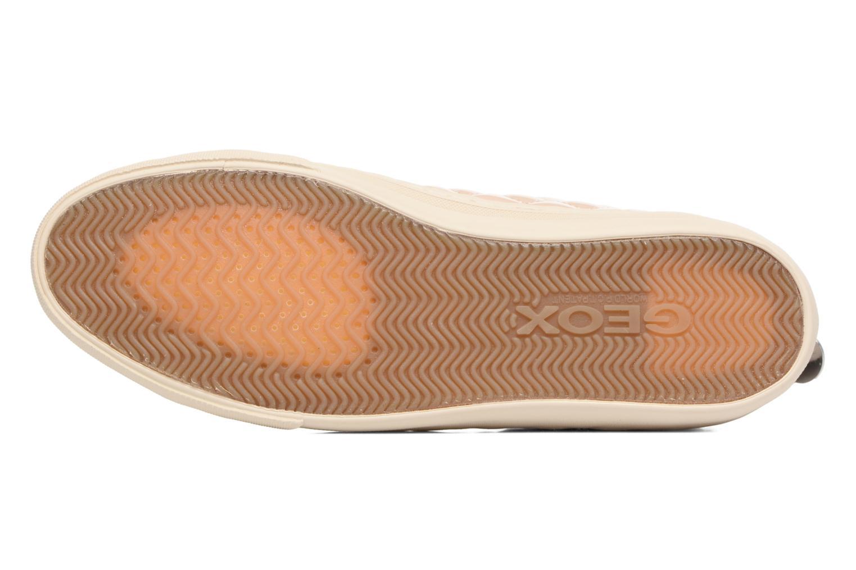 Sneakers Geox D NEW CLUB A D4258A Beige immagine dall'alto