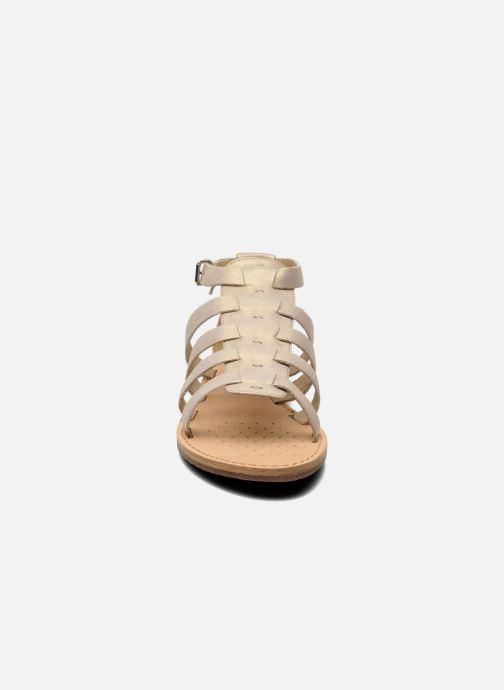 Sandali e scarpe aperte Geox D JOLANDA D D5275D Beige modello indossato
