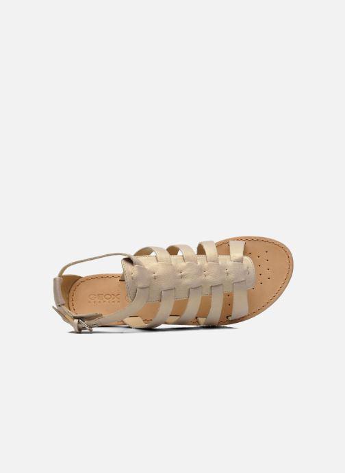 Sandali e scarpe aperte Geox D JOLANDA D D5275D Beige immagine sinistra