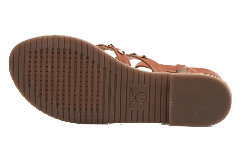 Sandals Geox D JOLANDA E D5275E Brown view from above
