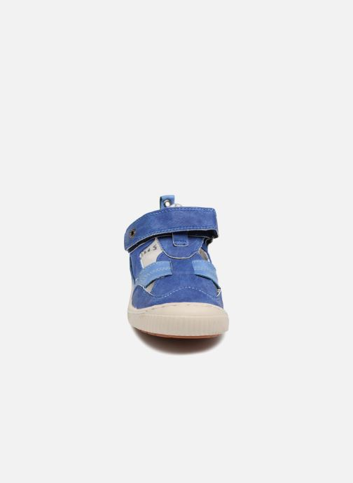 Zapatos con velcro Kickers ZIGUERO Azul vista del modelo