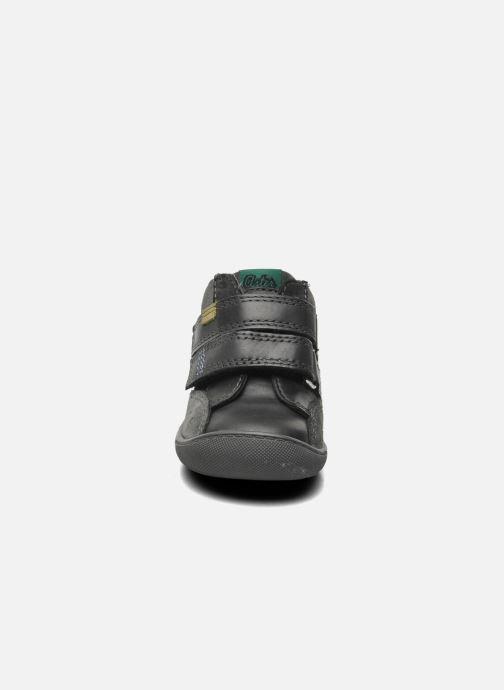 Chaussures à scratch Aster Pavel Noir vue portées chaussures