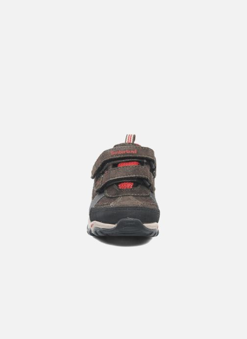 Trainers Timberland Trail Force FTK Brown model view