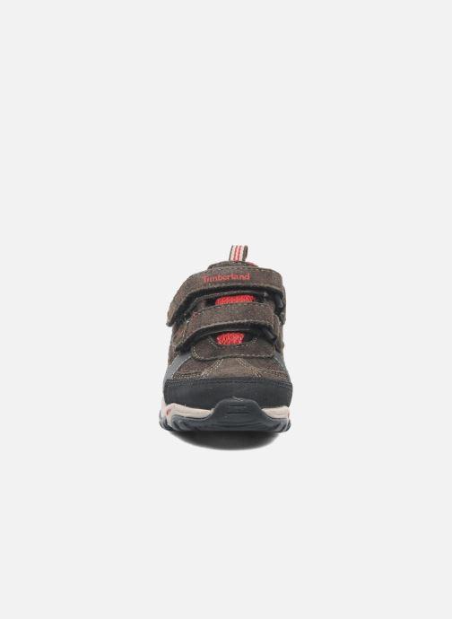 Sneakers Timberland Trail Force FTK Marrone modello indossato