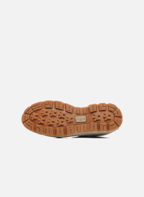 Sneaker Aigle Tenere Light Low W Cvs beige ansicht von oben