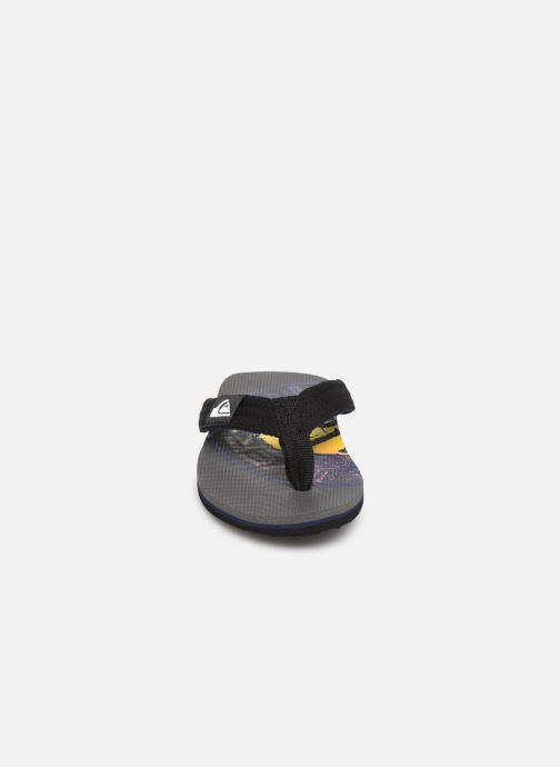 Flip flops Quiksilver MOLOKAI LAYBACK YOUTH Grey model view
