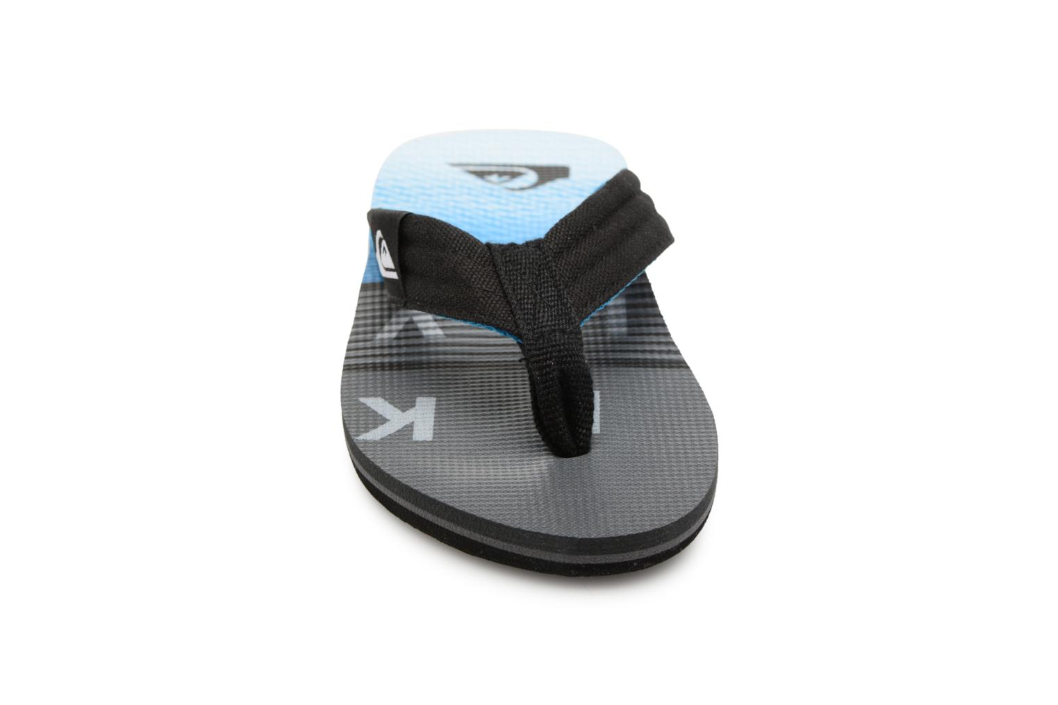 Tongs Quiksilver MOLOKAI LAYBACK YOUTH Gris vue portées chaussures