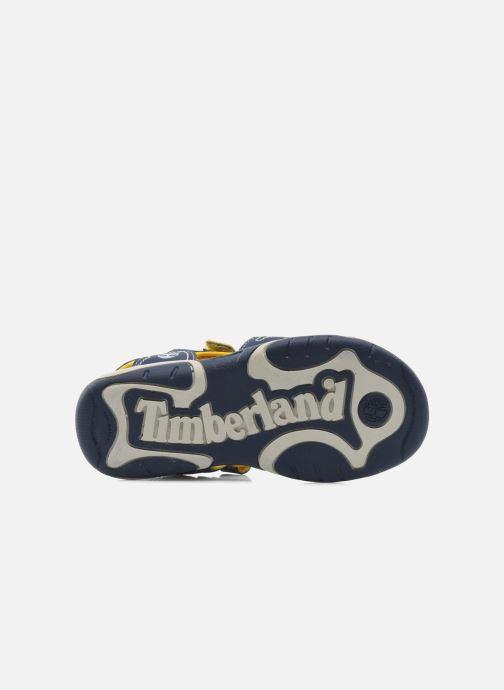 Sandali e scarpe aperte Timberland Adventure Seeker 2 Strap Azzurro immagine dall'alto
