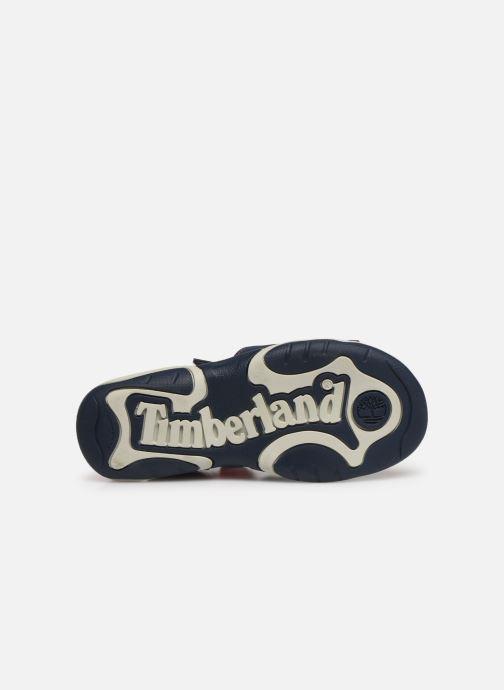 Sandales et nu-pieds Timberland Adventure Seeker 2 Strap Bleu vue haut
