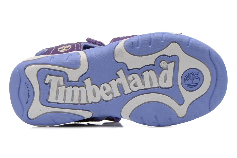 Sandales et nu-pieds Timberland Adventure Seeker 2 Strap Violet vue haut
